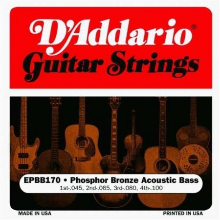 Daddario EPBB170 Phosphor Bronze Acoustic Bass